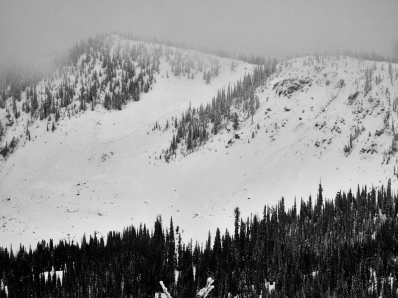 These avalanches were remotely triggered by Ben as he traveled along the ridgeline visible above. NE aspect at 8,600'.  They failed on a layer of surface hoar that was buried on 12/7.