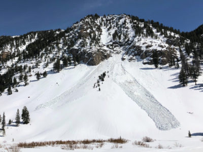 Natural wet slab avalanches in Frenchman's Creek. NW, ~8000'
