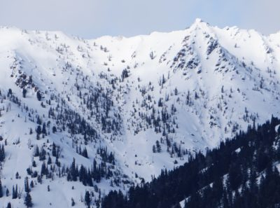 Feb 23, 2021: These 2 large slab avalanches released naturally during the strong NW wind event Monday or Tuesday in the Westernhome Gulch drainage (9650', S-SE).